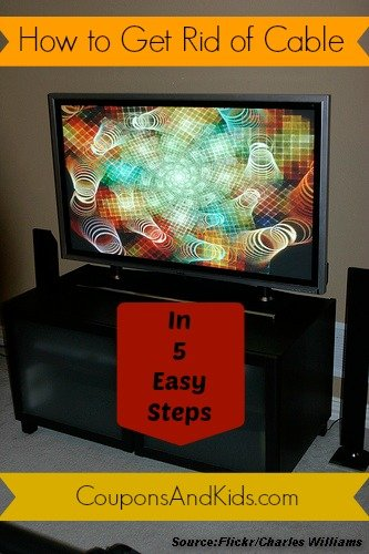 Get rid of cable and save money in 5 easy steps coupons for How to get money easily as a kid